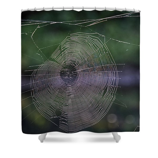 Another Web Shower Curtain