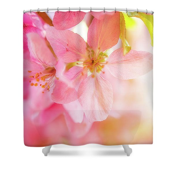 Apple Blossoms Bright Glow Shower Curtain