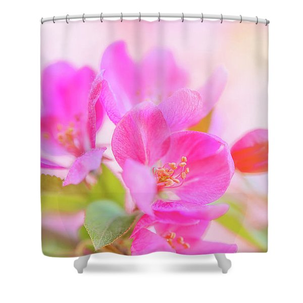 Apple Blossoms Colorful Glow Shower Curtain