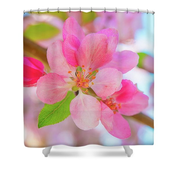 Apple Blossoms Red And Blue Shower Curtain