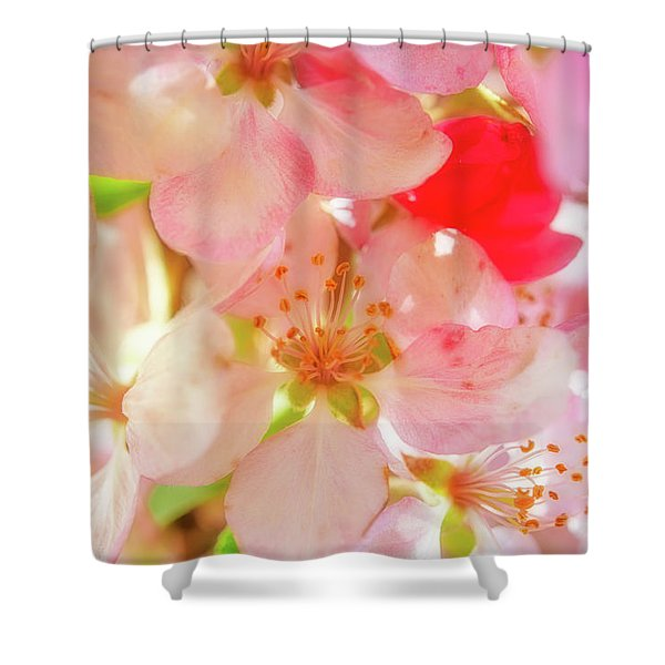 Apple Blossoms Textures Shower Curtain