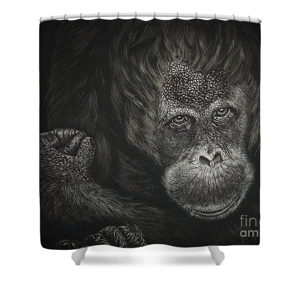 Are You Looking At Me Shower Curtain