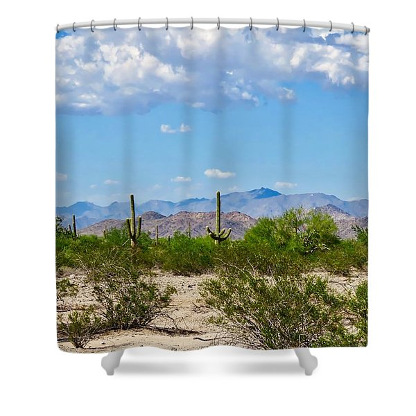 Arizona Desert Hidden Valley Shower Curtain
