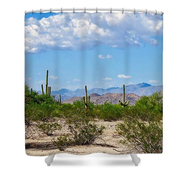 Arizona Desert Hidden Valley Shower Curtain