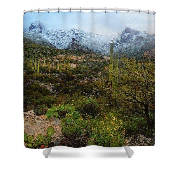 Arizona Winter Light Shower Curtain
