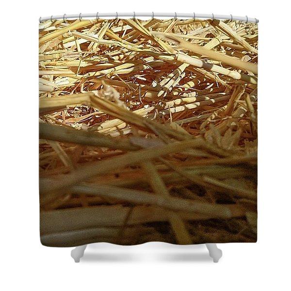 Golden Straw Bed Shower Curtain