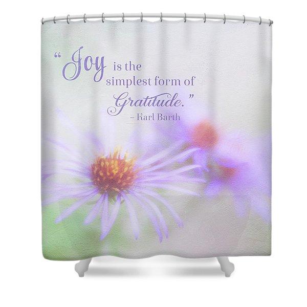 Joy And Gratitude For All Seasons Shower Curtain