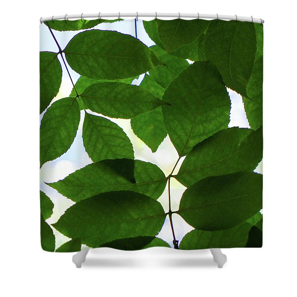 Shower Curtain featuring the photograph Natural Patterns I by Emily Johnson