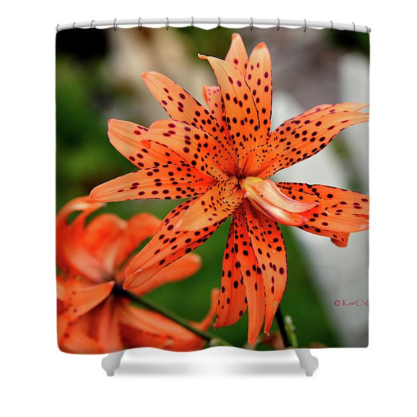 Asian Tiger Lily Shower Curtain