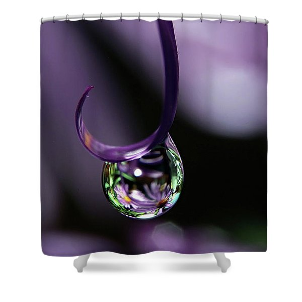 Asters Shower Curtain