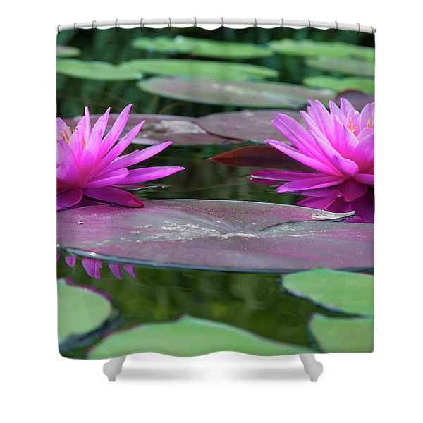 At Longwood Gardens - Water Lillies  Shower Curtain