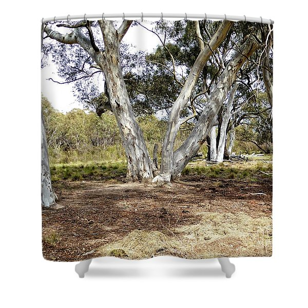 Australian Bush Scene Shower Curtain