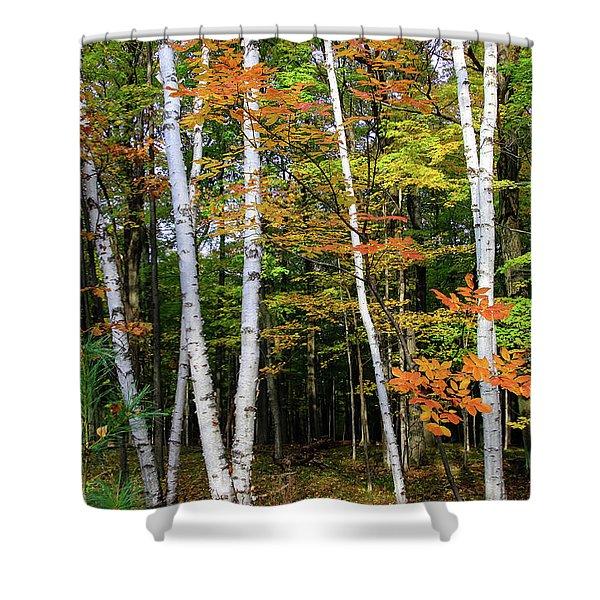 Autumn Grove, Wisconsin Shower Curtain