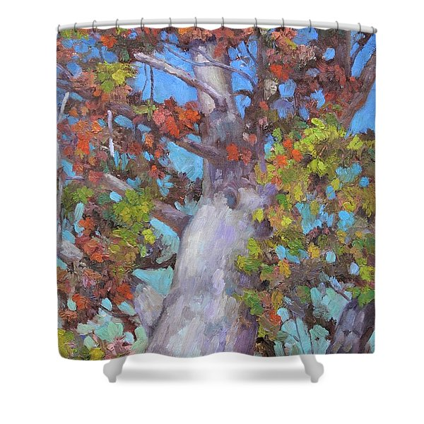 Autumn Oak Shower Curtain