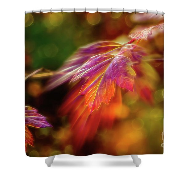 Autumn's Glow 4 Shower Curtain