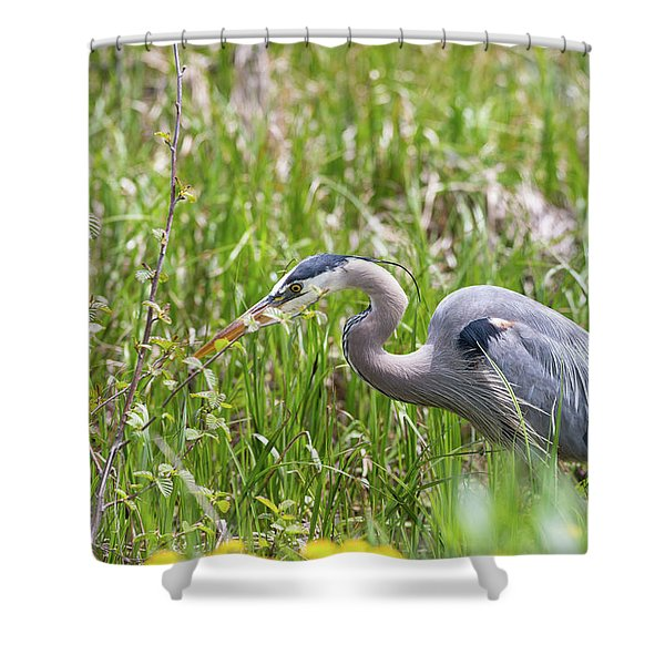 Shower Curtain featuring the photograph B40 by Joshua Able's Wildlife