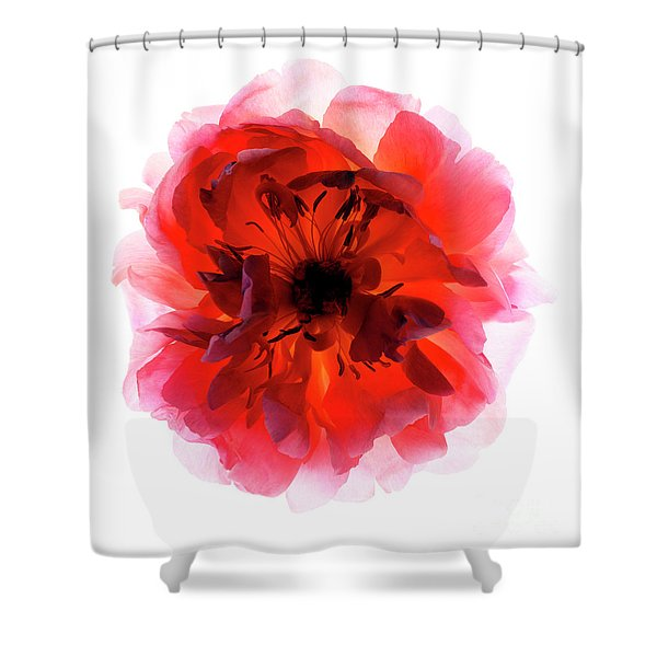 B760/1834 Shower Curtain