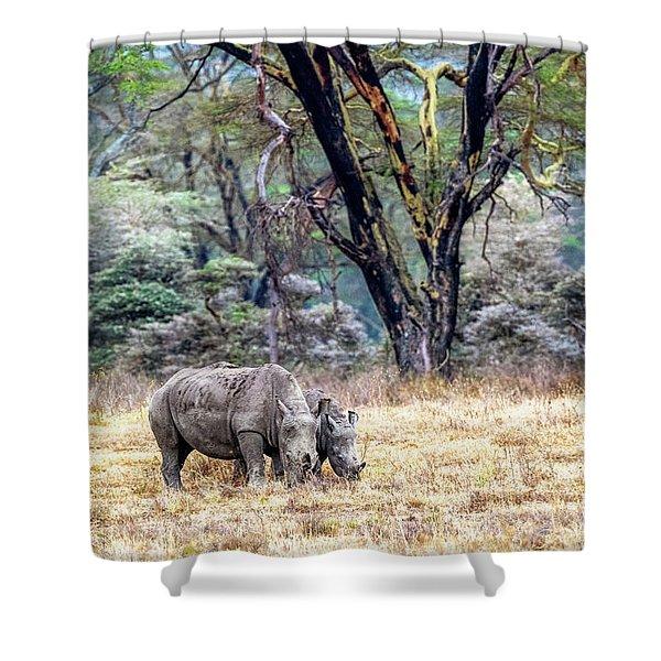Baby And Parent White Rhino In Lake Nakuru Shower Curtain
