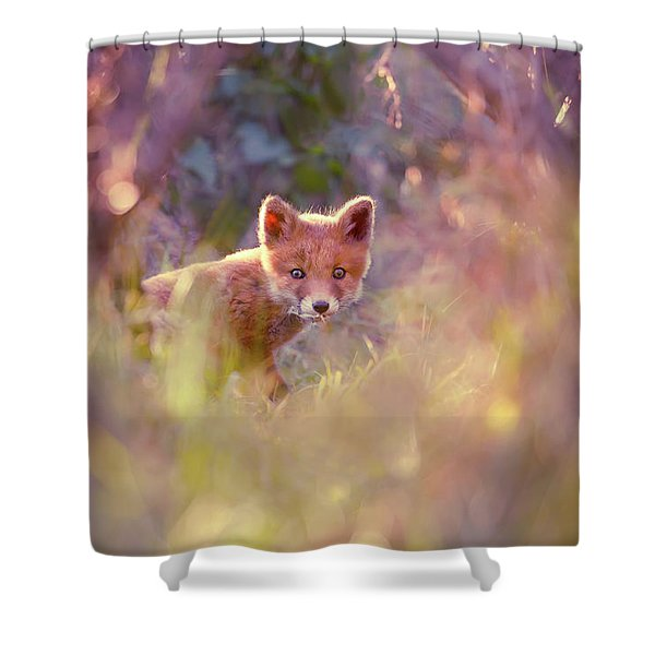 Baby Fox In A Fairytale Forest Shower Curtain