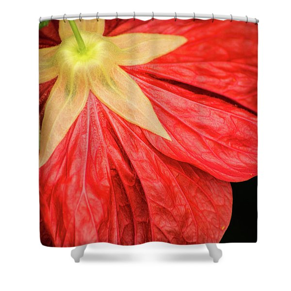 Back Of Red Flower Shower Curtain