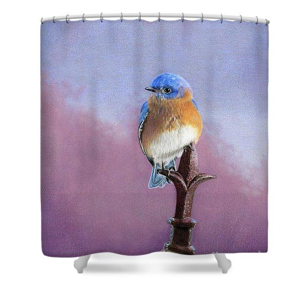 Backyard Bluebird Shower Curtain