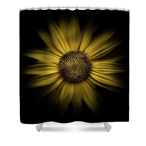 Backyard Flowers 18 Color Flow Version Shower Curtain