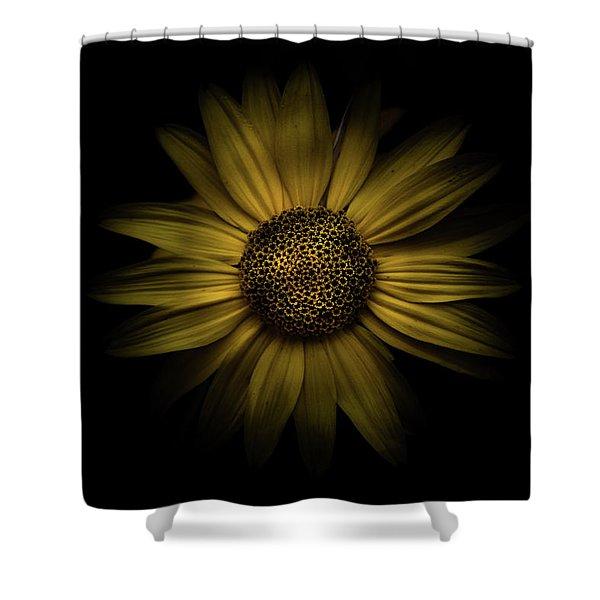 Backyard Flowers 18 Color Version Shower Curtain