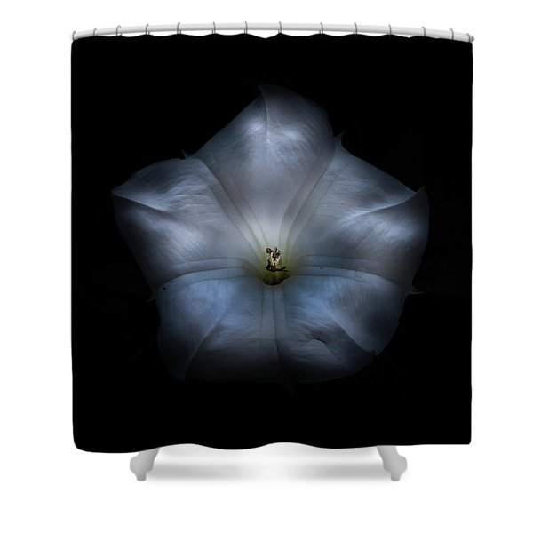 Backyard Flowers 24 Color Version Shower Curtain