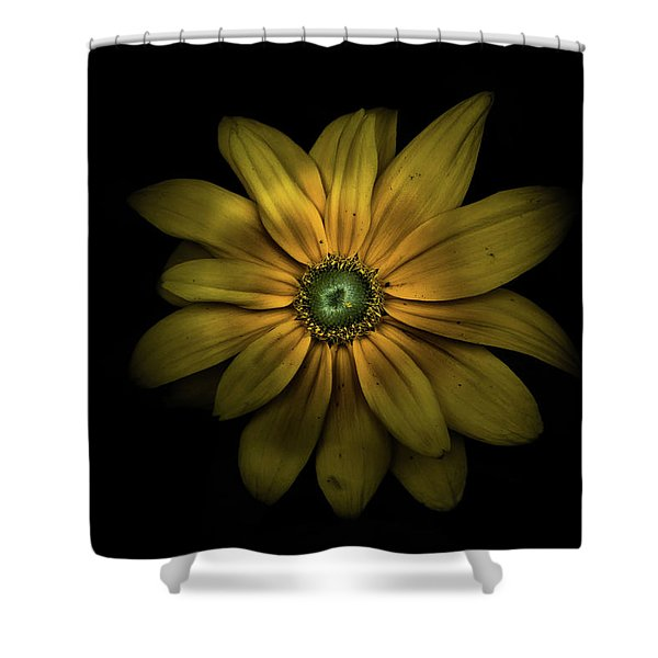 Backyard Flowers 34 Color Version Shower Curtain