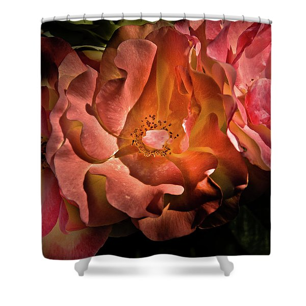 Backyard Flowers 40 Color Version Shower Curtain