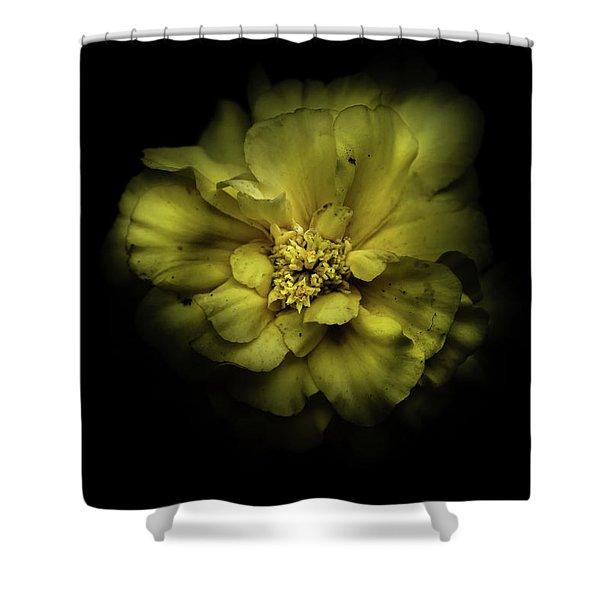 Backyard Flowers 41 Color Version Shower Curtain