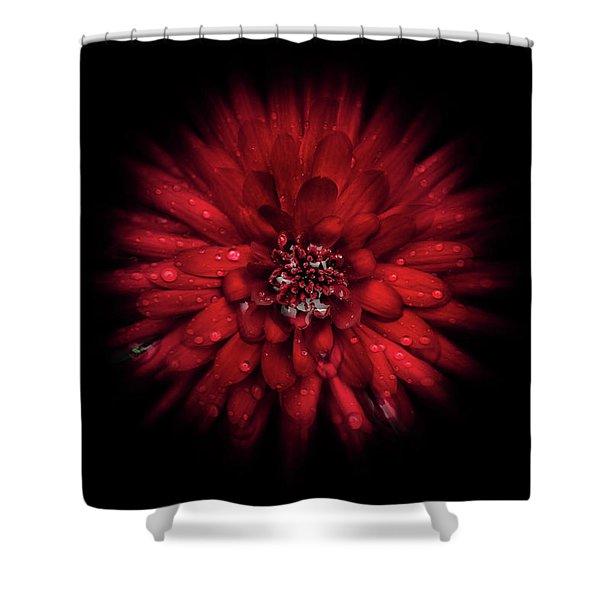 Backyard Flowers 45 Color Flow Version Shower Curtain