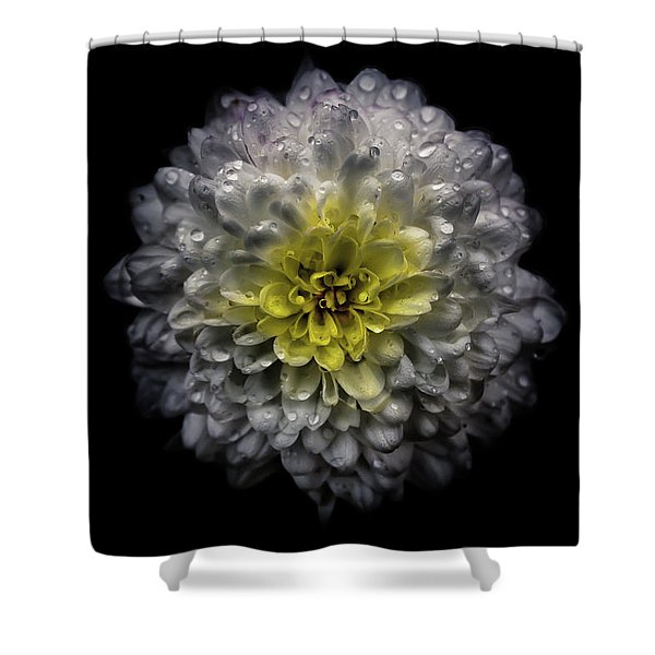 Backyard Flowers 46 Color Version Shower Curtain