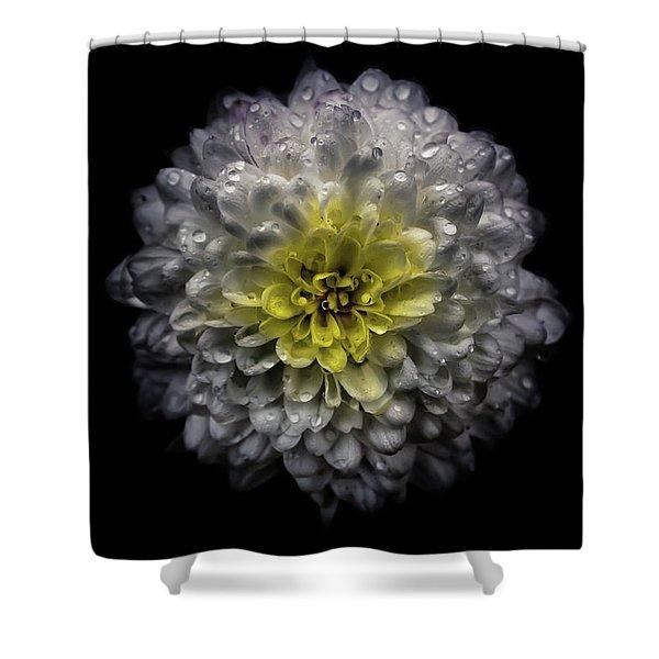 Backyard Flowers 46 Color Version Shower Curtain