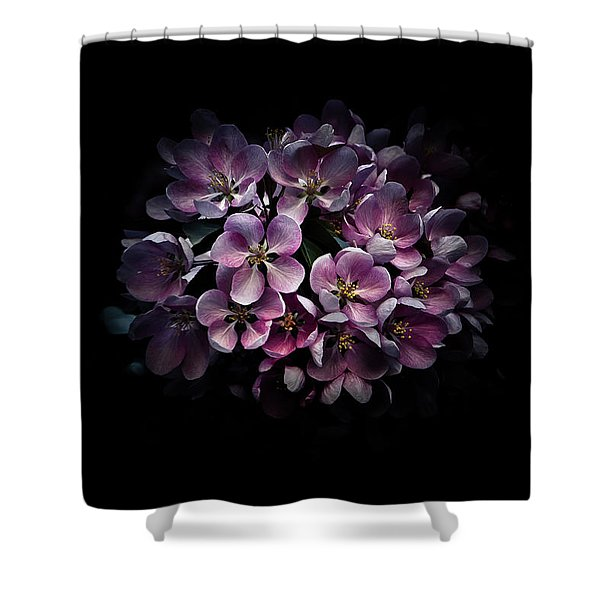 Backyard Flowers 47 Color Version Shower Curtain