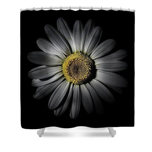 Backyard Flowers 52 Color Version Shower Curtain