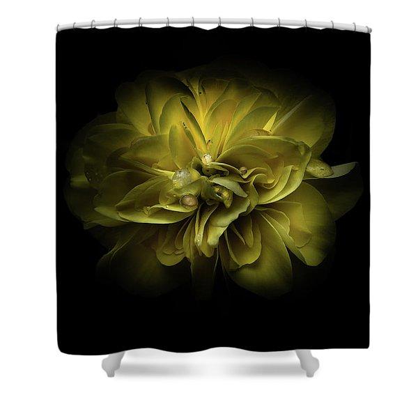 Backyard Flowers 67 Color Version Shower Curtain