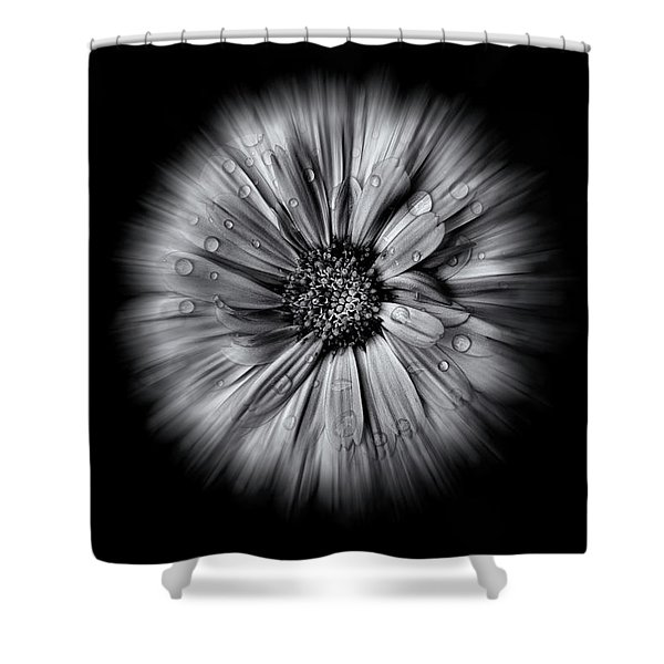 Backyard Flowers In Black And White 10 Flow Version Shower Curtain