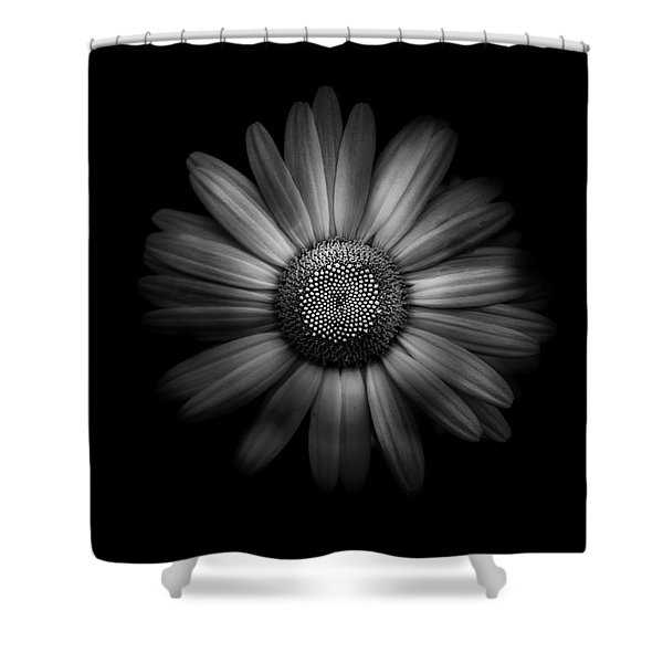 Backyard Flowers In Black And White 31 Shower Curtain