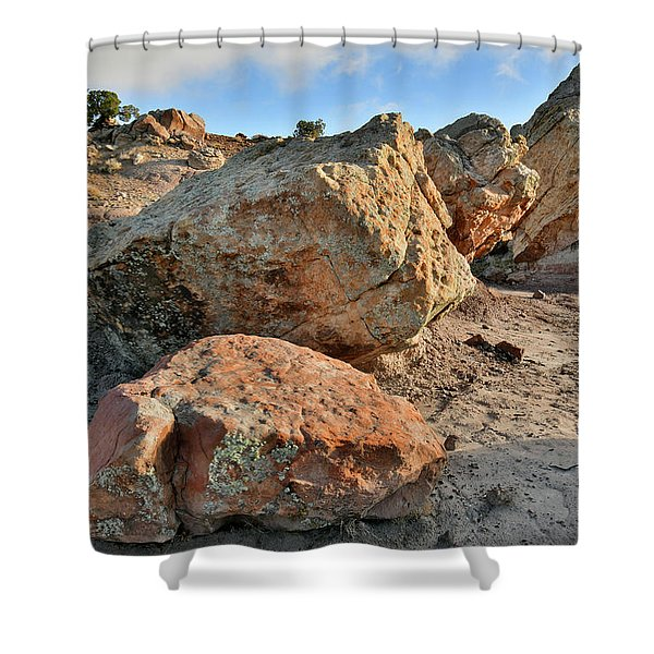 Balanced Rocks In Bentonite Site Shower Curtain