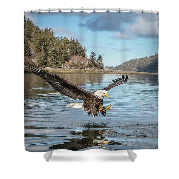 Bald Eagle Fishing In Sadie Cove Shower Curtain