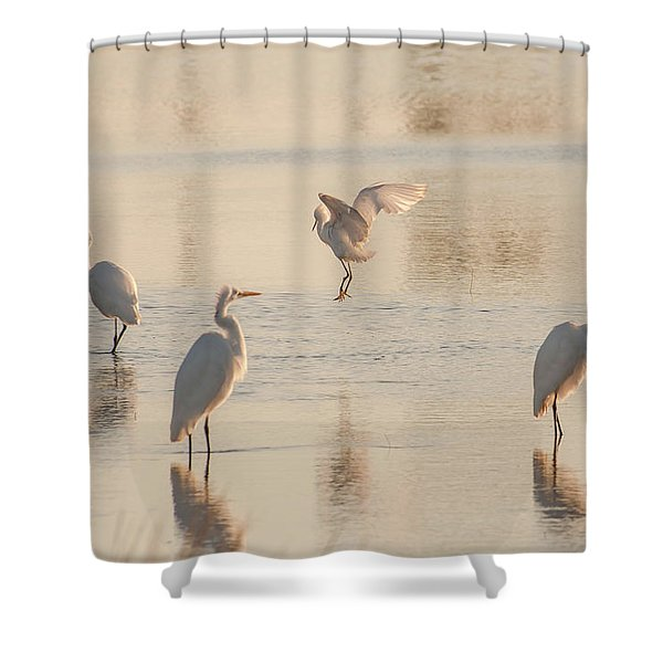 Ballet Of The Egrets Shower Curtain