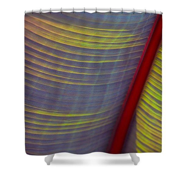 Banana Leaf 8597 Shower Curtain