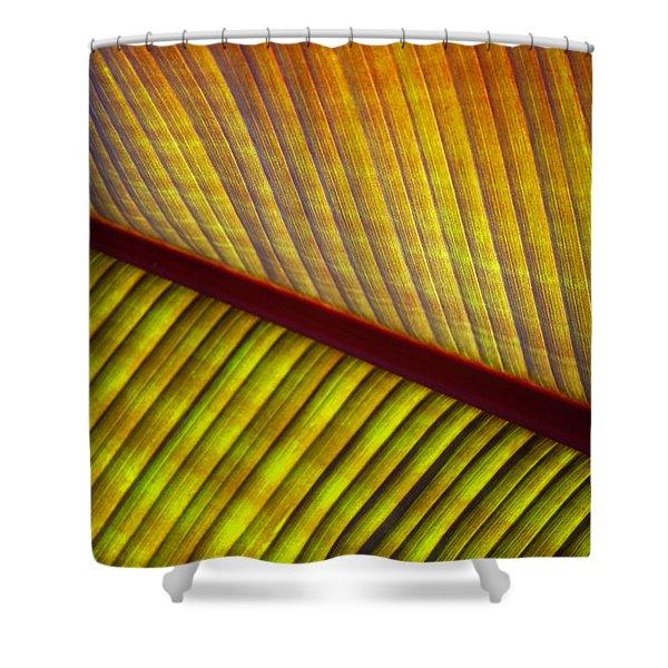 Banana Leaf 8602 Shower Curtain