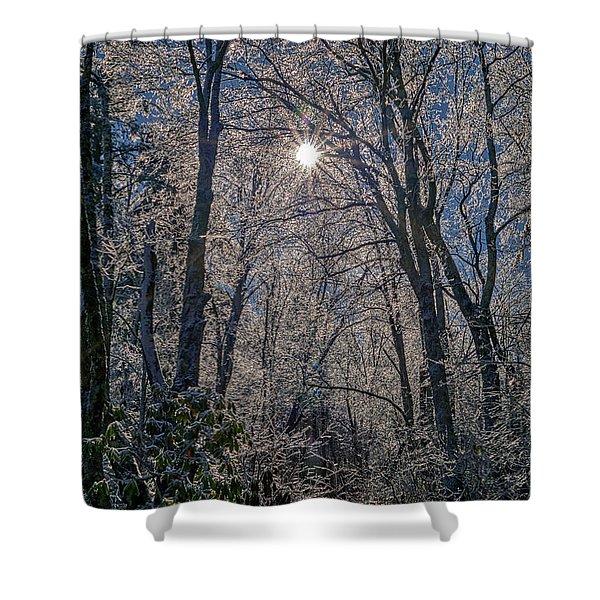 Bass Lake Frosty Shower Curtain