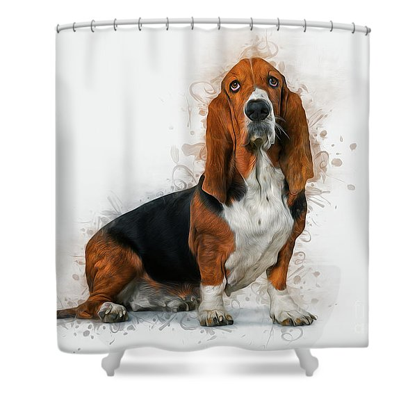 Basset Hound Shower Curtain