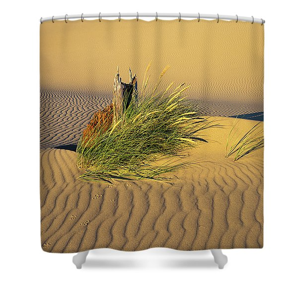 Beachgrass And Ripples Shower Curtain