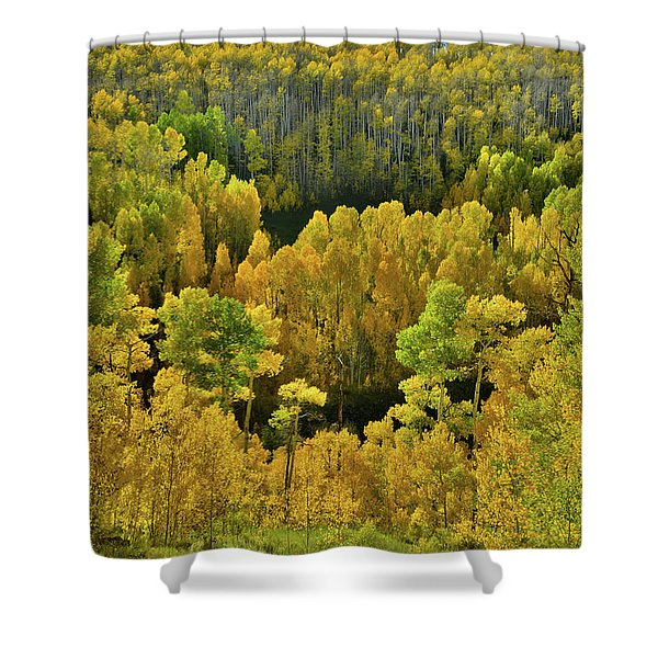 Beautiful Fall Colors At Woods Lake State Wildlife Area Shower Curtain