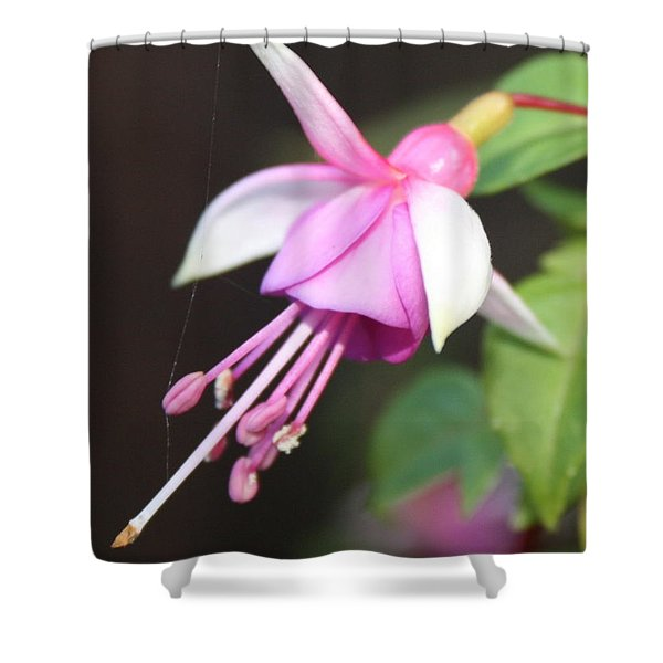 Beautiful Fuchsia Shower Curtain