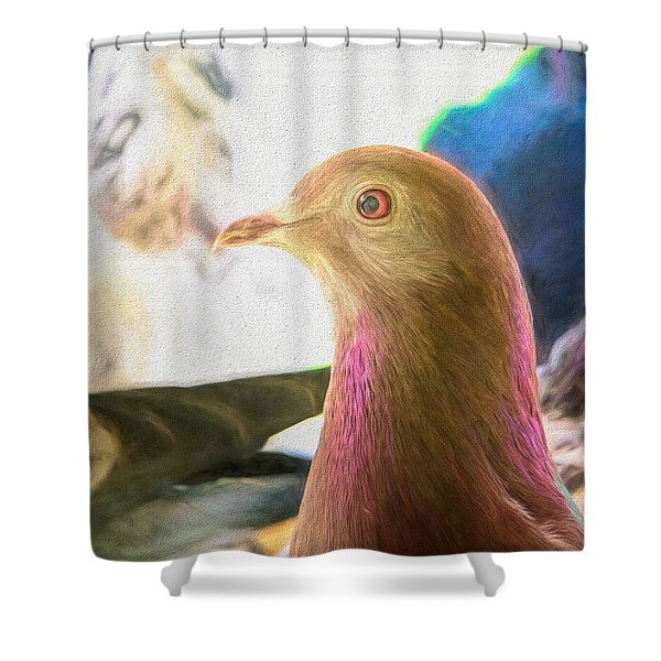 Beautiful Homing Pigeon Painted Shower Curtain